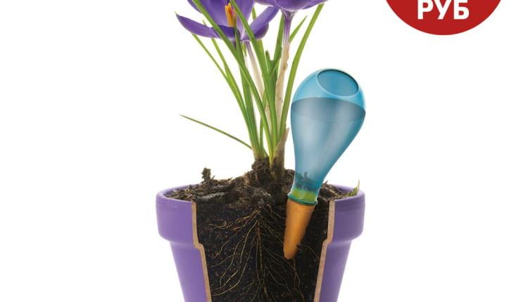 НОВИНКА! Увлажнитель почвы для комнатных растений — идеальное