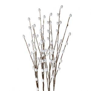 Ветка вербы, 30 см, 5 шт