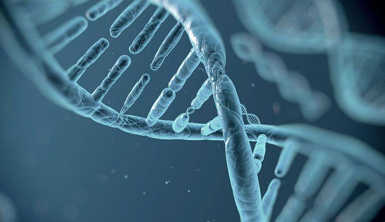 ЕГЭ по биологии в 2021 году